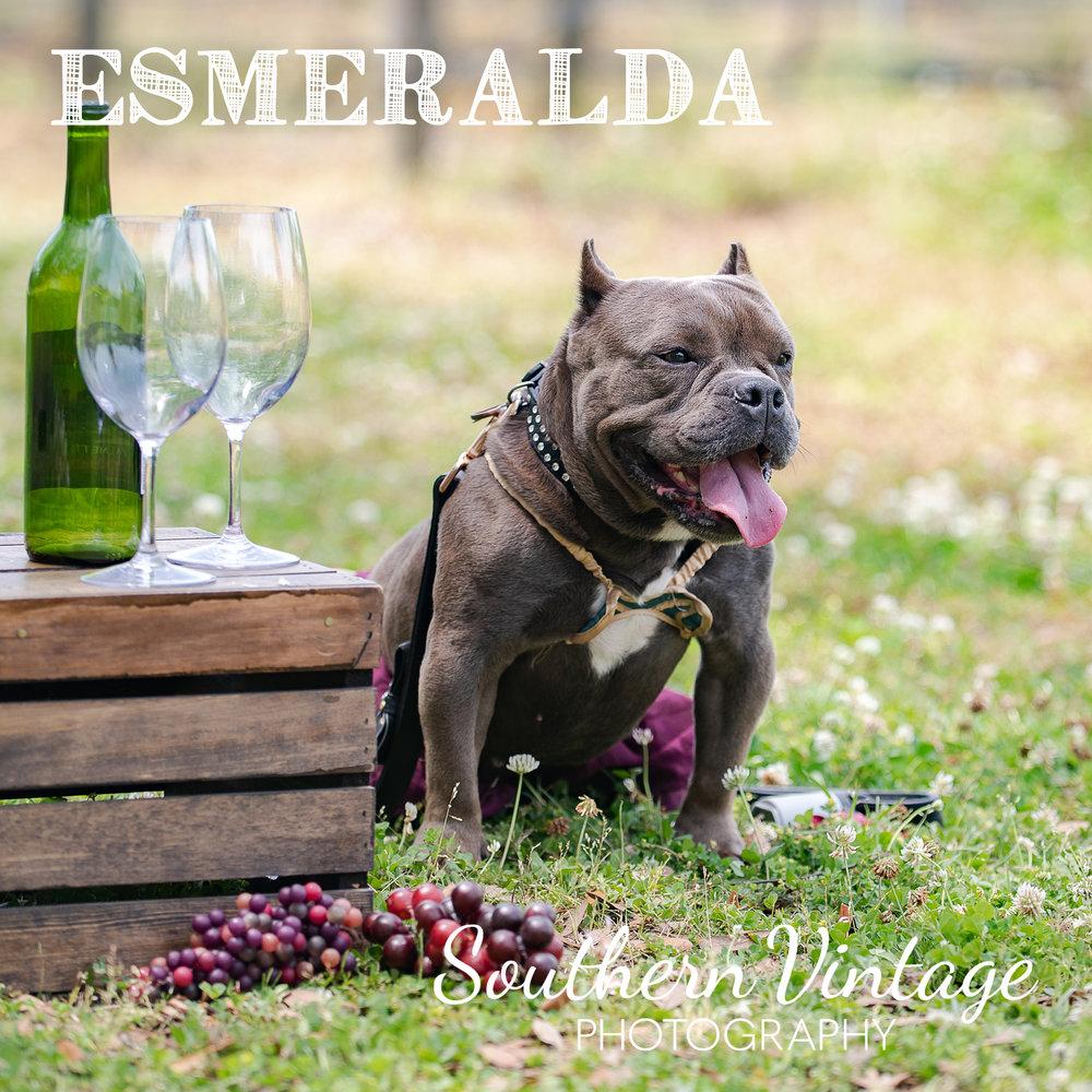 06_Esmeralda.jpg