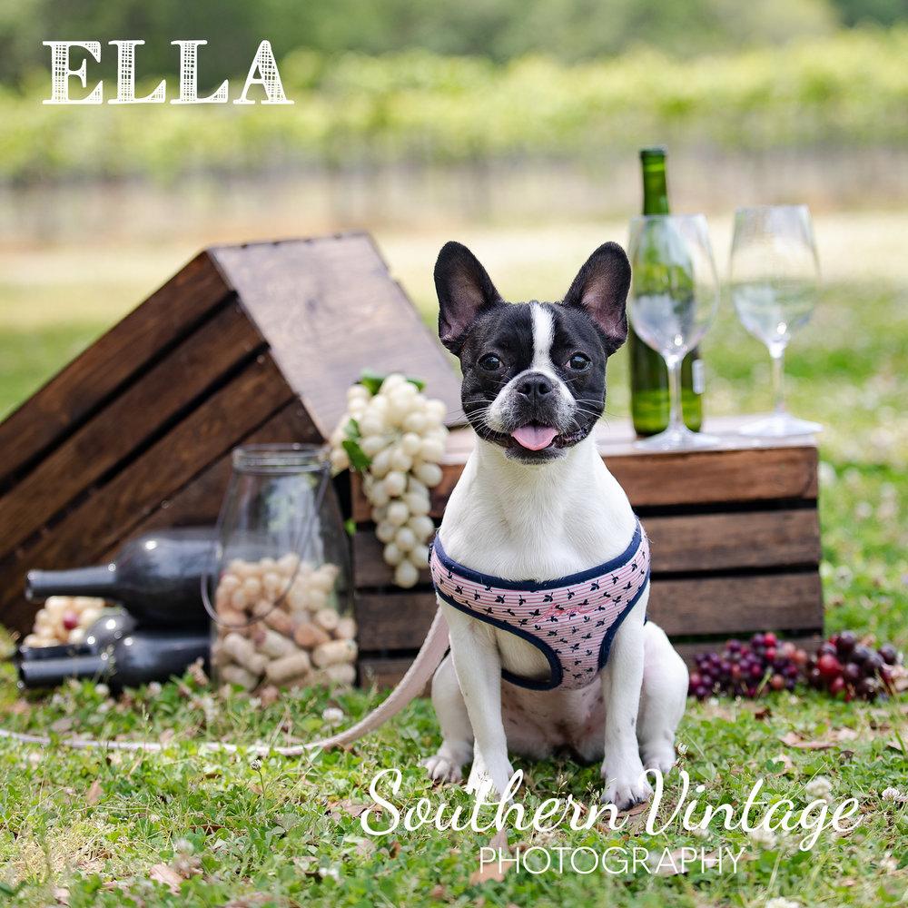 08_Ella.jpg