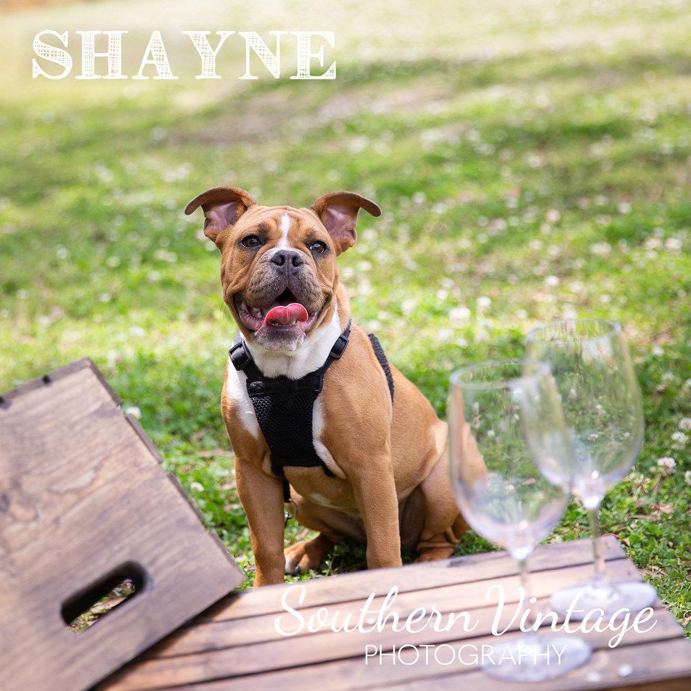 12_Shayne.jpg