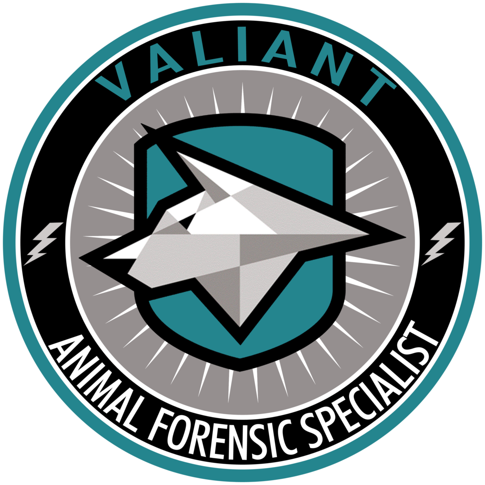 VARR Forensic.png