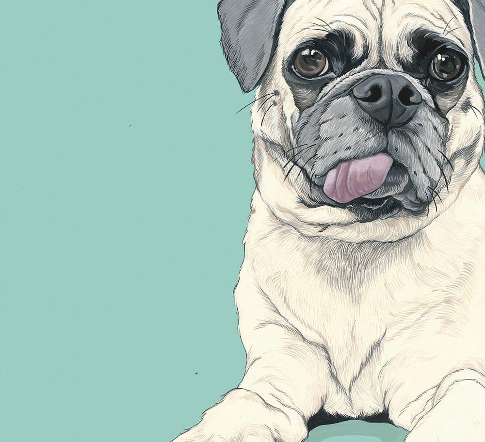 Beautiful portrait of Fred courtesy of Art By Manda -  www.artbymanda.com
