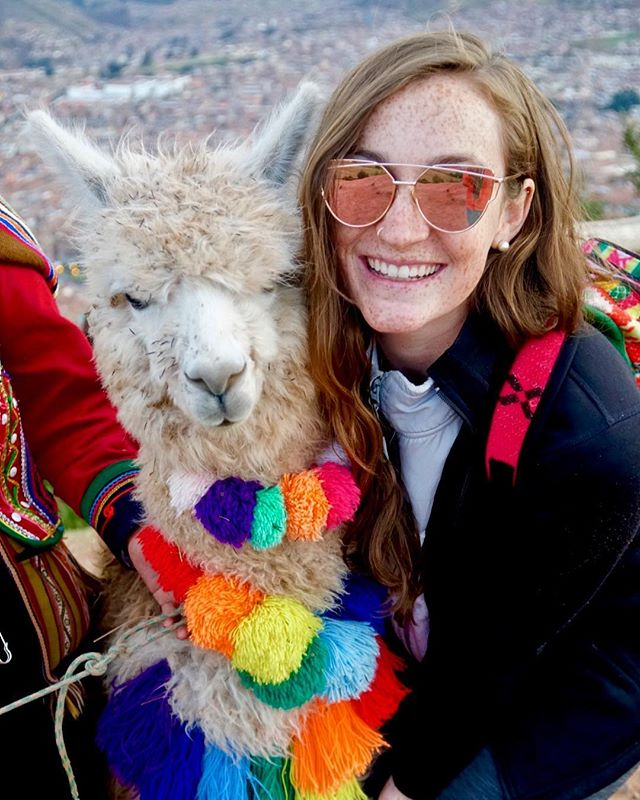 Let me tell ya about my best friend 🇵🇪 #alpaca #cusco #peru