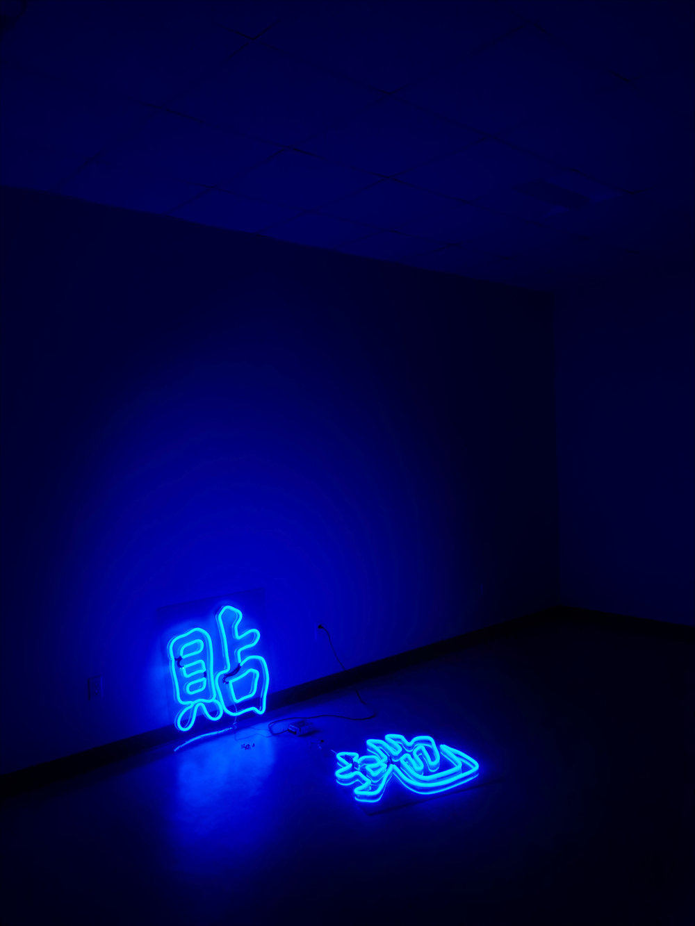 Probably Joel,  Local , neon, dimensions variable, 2018. Photographed by the artist.