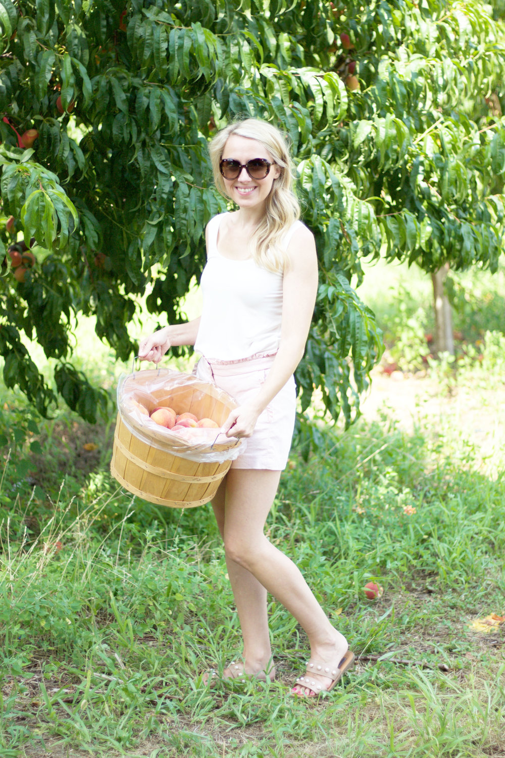 Peach Picking Fun, So Dressed Up