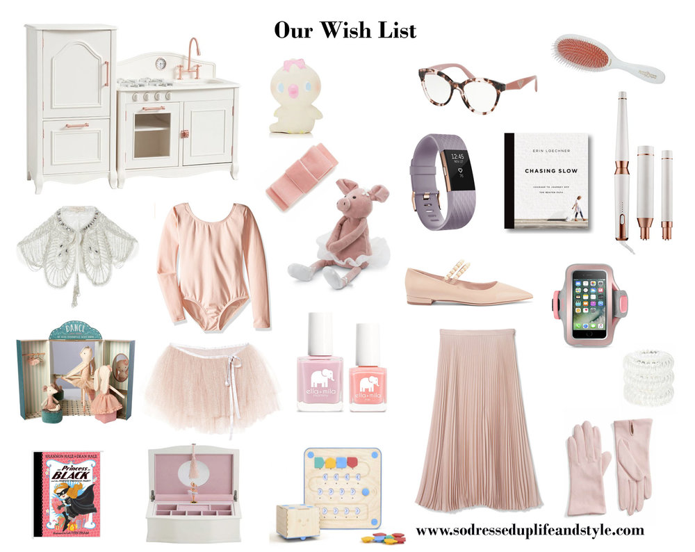 Holiday Gift Guide OUR WISHLIST.jpg