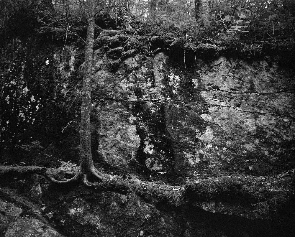 Bailey-Q-Photo-Landscape-015.jpg