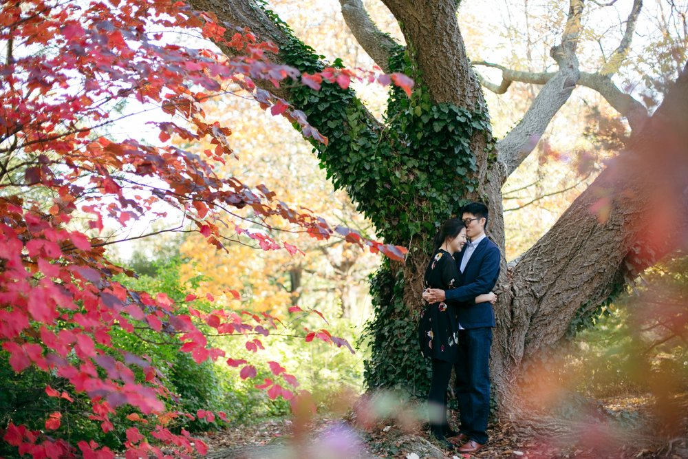 Bailey-Q-Photo-Arnold-Arboretum-Boston-Engagement-029.JPG