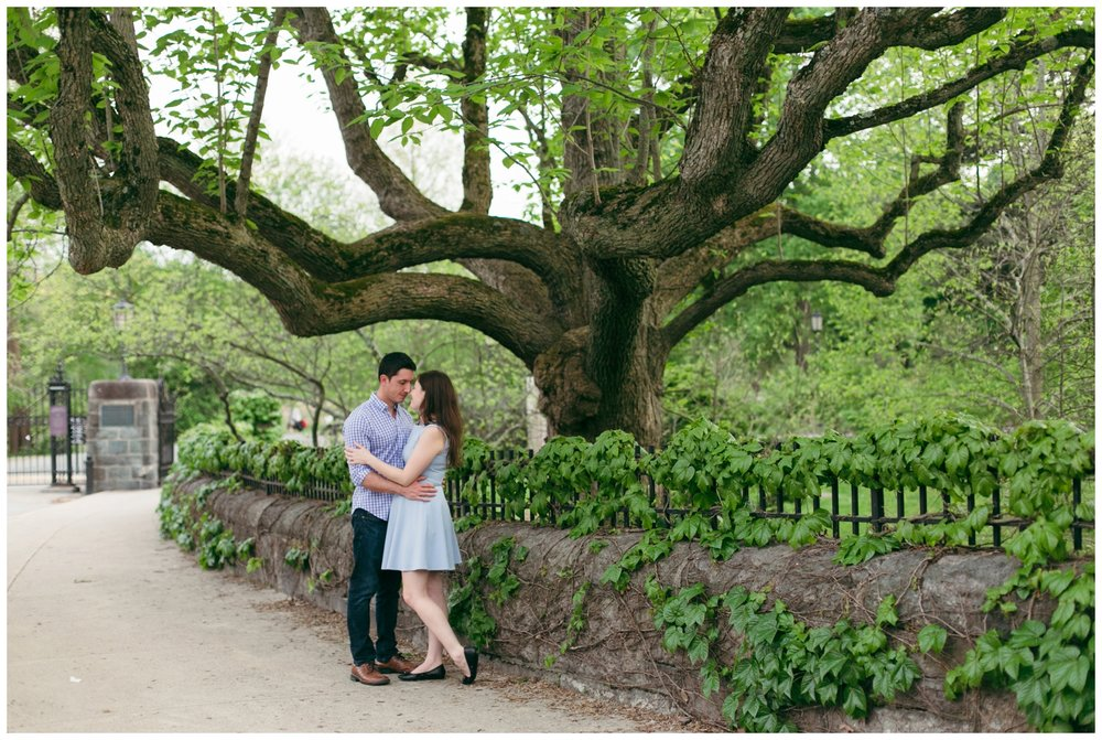 Arnold-Arboretum-Engagement-Boston-Wedding-Photographer-Bailey-Q-Photo-026.jpg