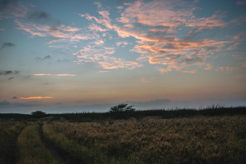 sunrise (1 of 1).jpg