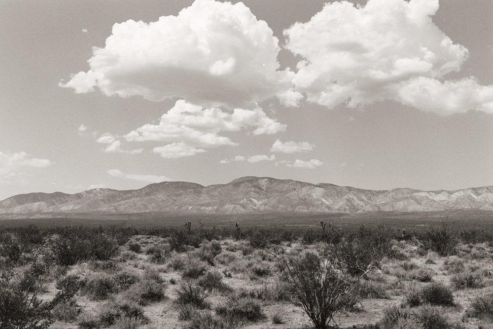 untitled (1 of 1)-80.jpg