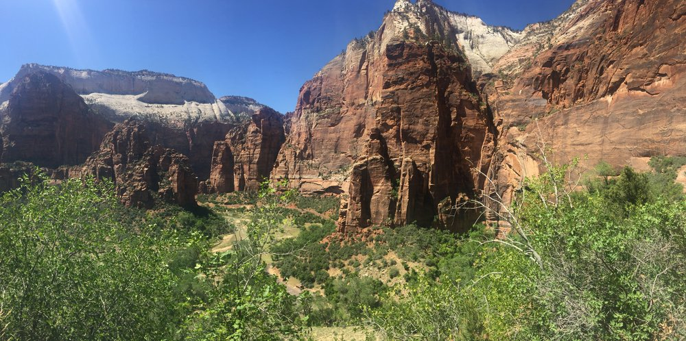 Zion Views