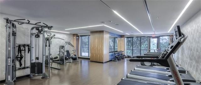 36 Park- gym.jpg
