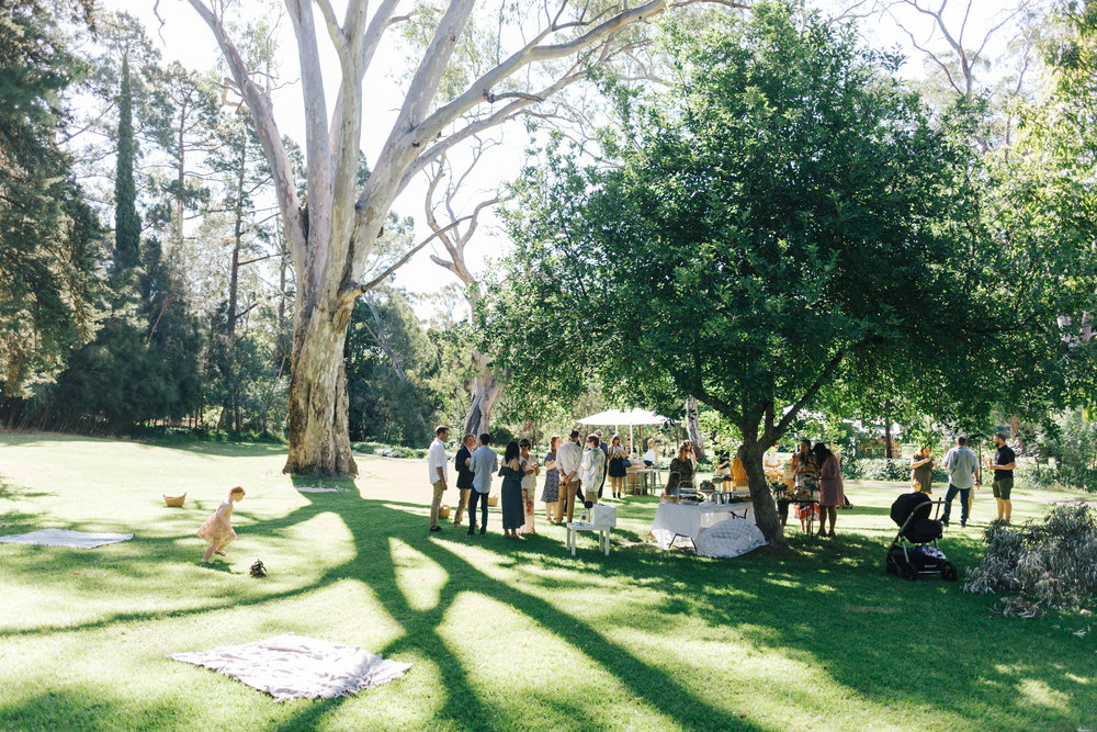 Adelaide Micro Wedding 034.JPG