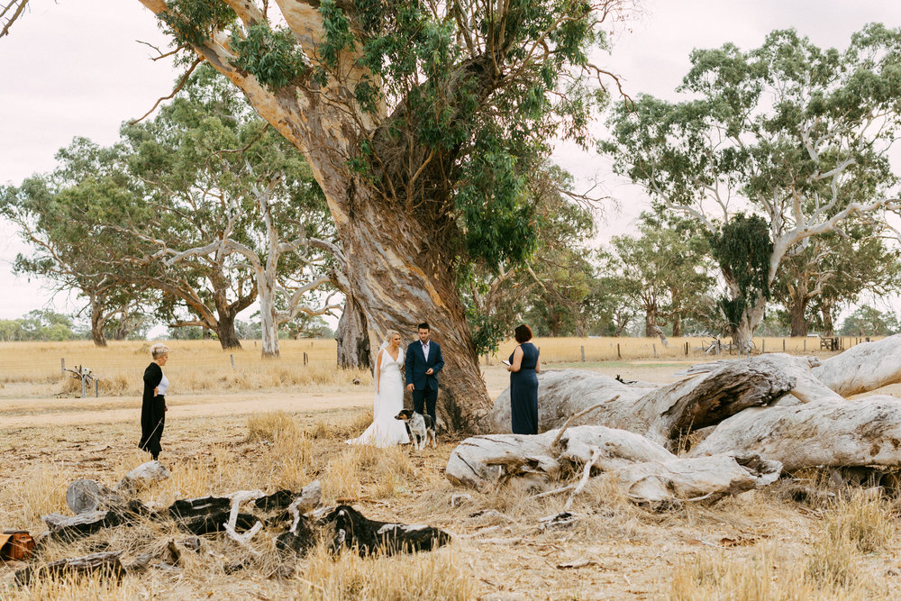 Coonawarra Elopement South Australia 022.jpg
