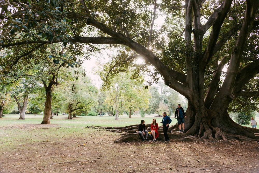 Adelaide Botanic Park Elopement 006.jpg