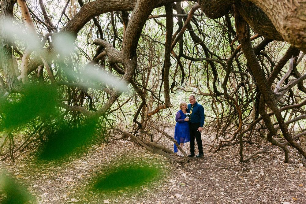 Adelaide Botanic Park Elopement 039.jpg