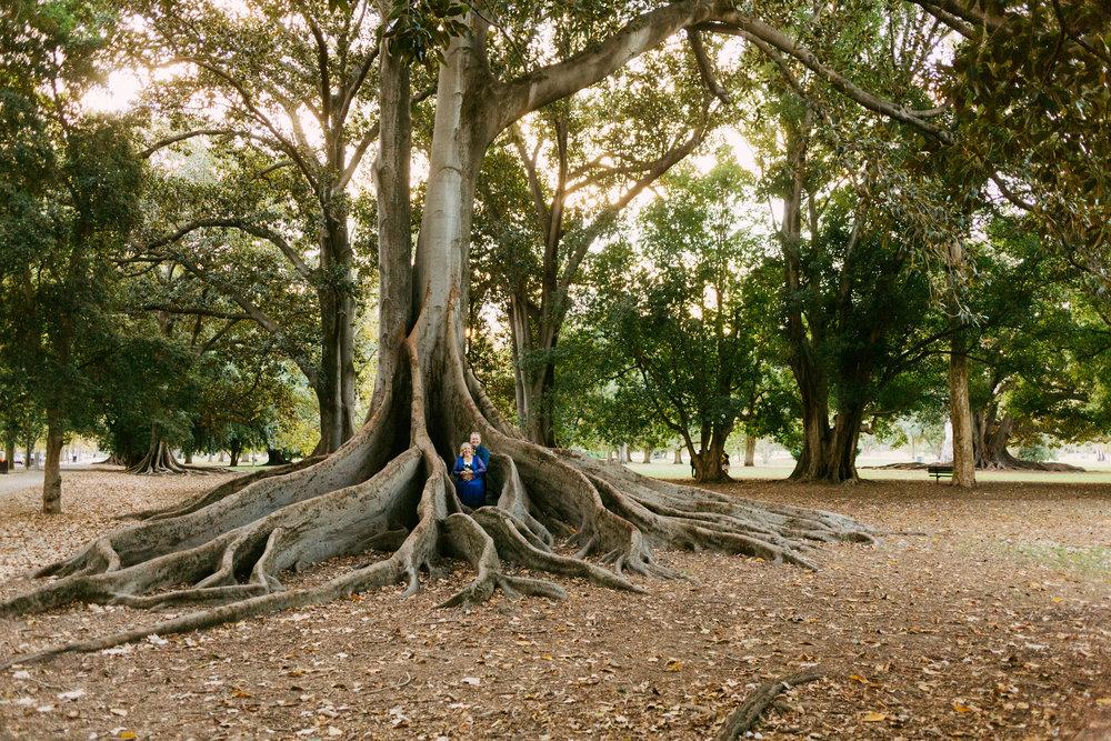 Adelaide Botanic Park Elopement 046.jpg