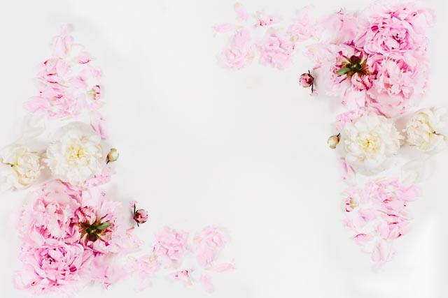 Blush-Image17.jpg