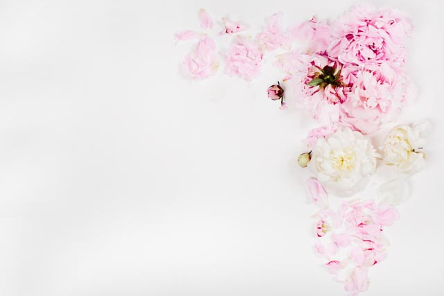 Blush-Image19.jpg