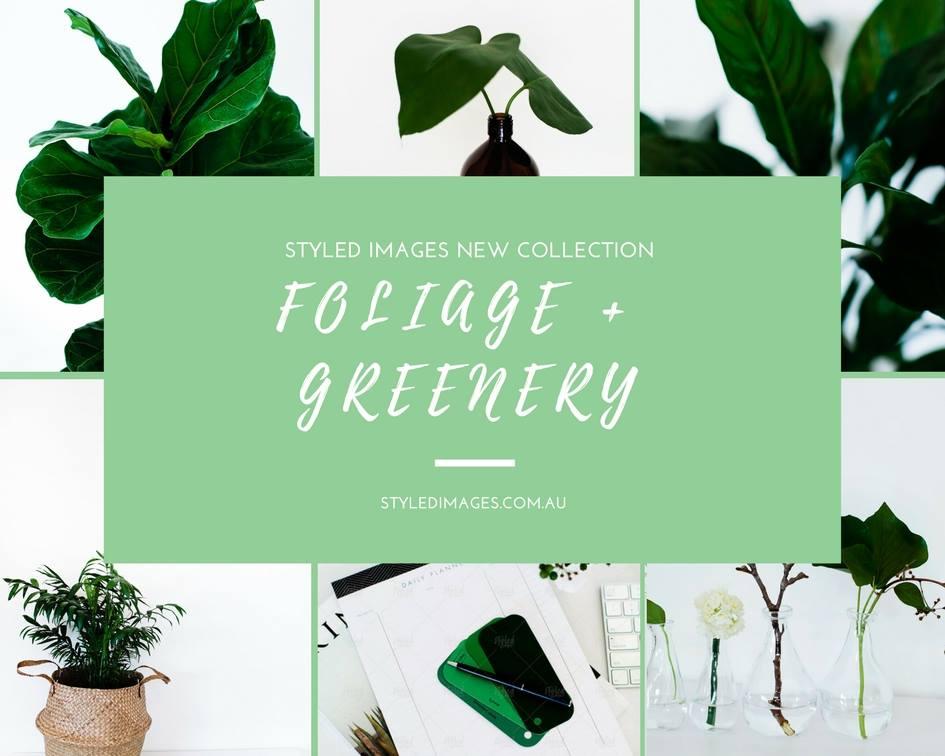 greenery promo.jpg