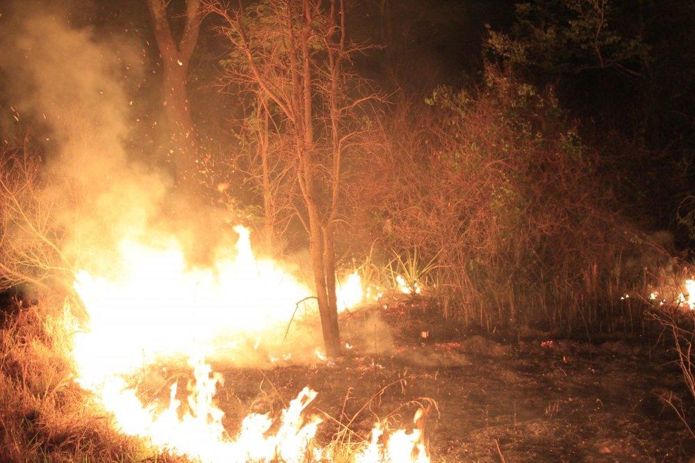 fire-cerro-cora-1024x682.jpg