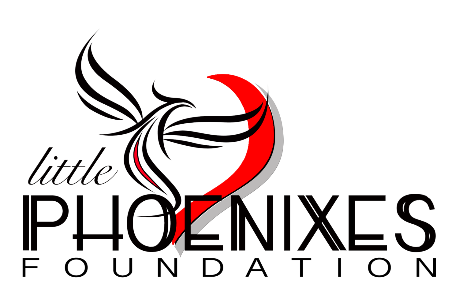 Little Phoenixes Foundation