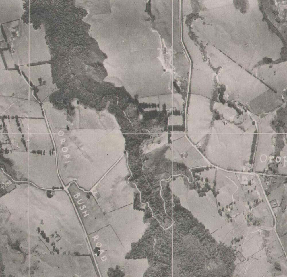 1943 aerial map - Oropi Bush Rd became Gluepot Rd