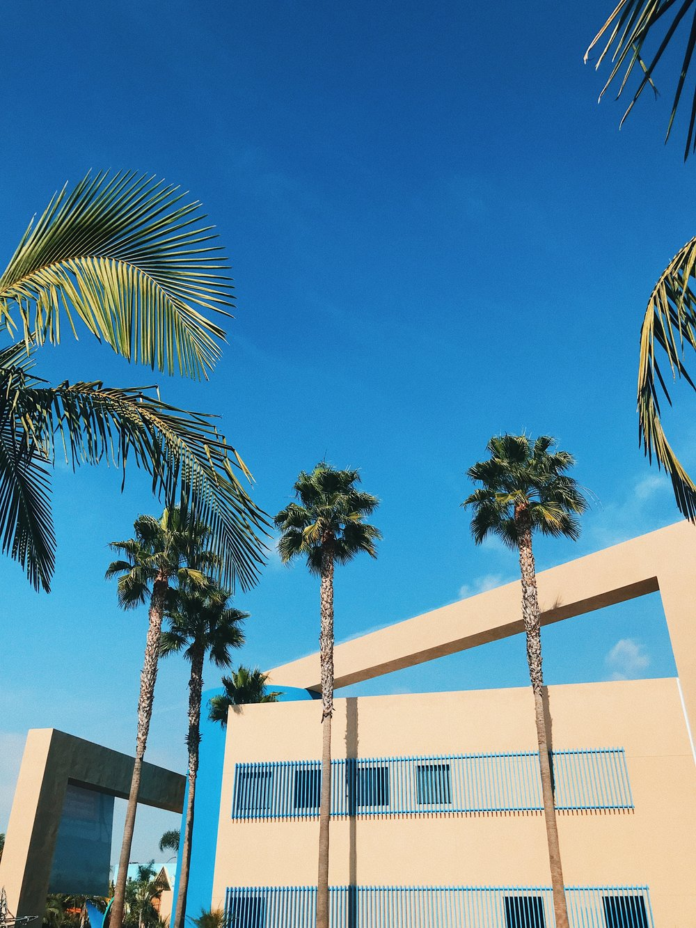 - Museum of Latin American Art (MOLAA), Long Beach
