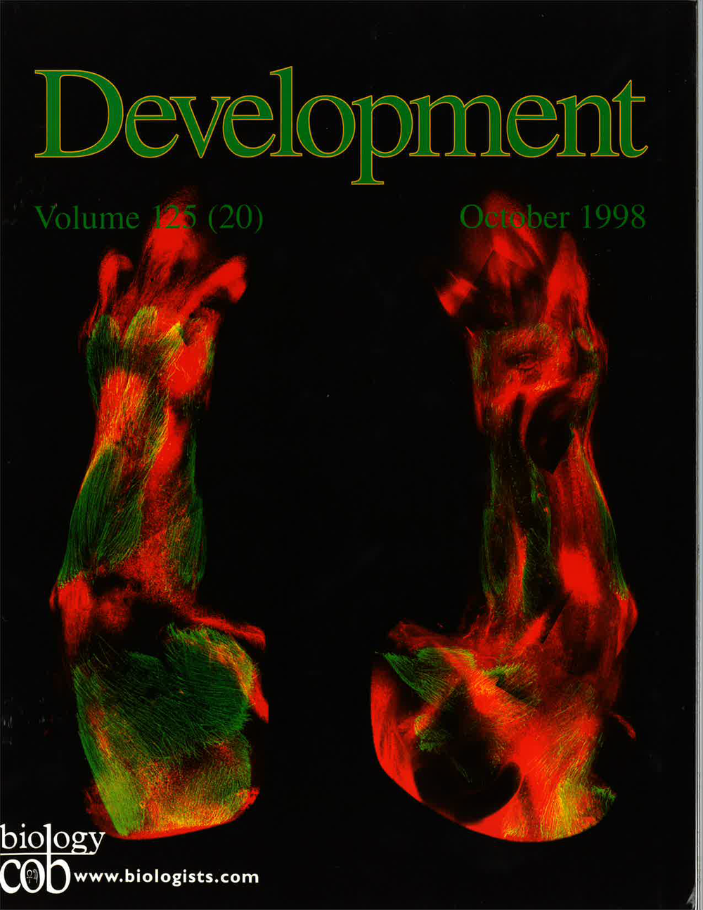 KardonDevelopment1998Cover.png