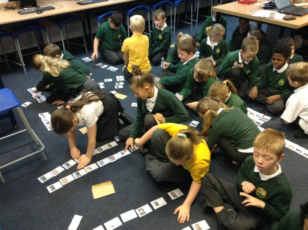 Sorting cards to answer questions.