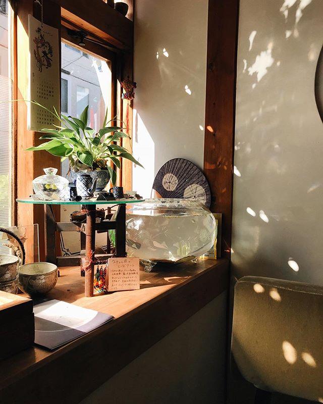 That light 💡 #osaka #japan #japanloverme #cafe #大阪カフェ #大阪 #こちかぜ #光 #カフェ