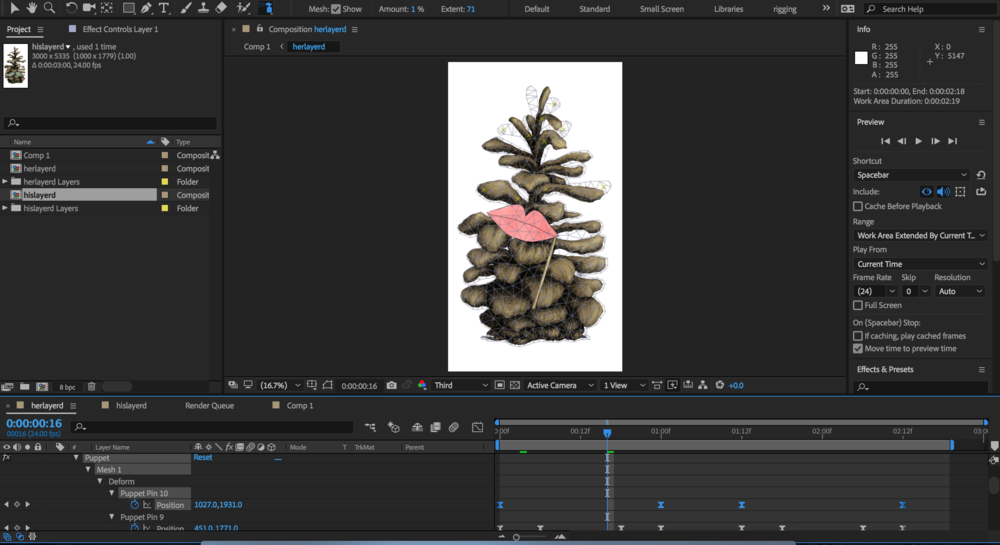After Effects puppet tool