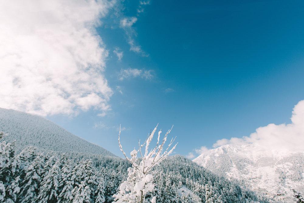 styled-shoot-winter-elatos-resort-greece-destination-wedding-luxury-chic-burgundy-white-gold-dinner-floral-design
