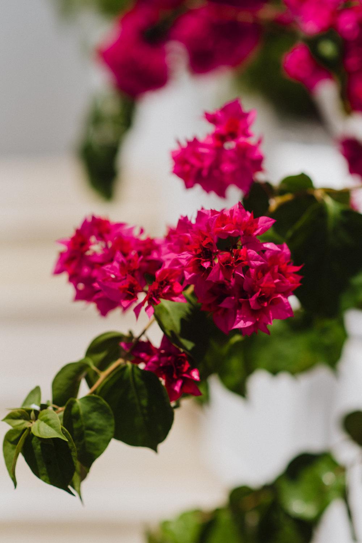wedding-santorini-bride-groom-greek-islands-event-planning-coordination-decoration