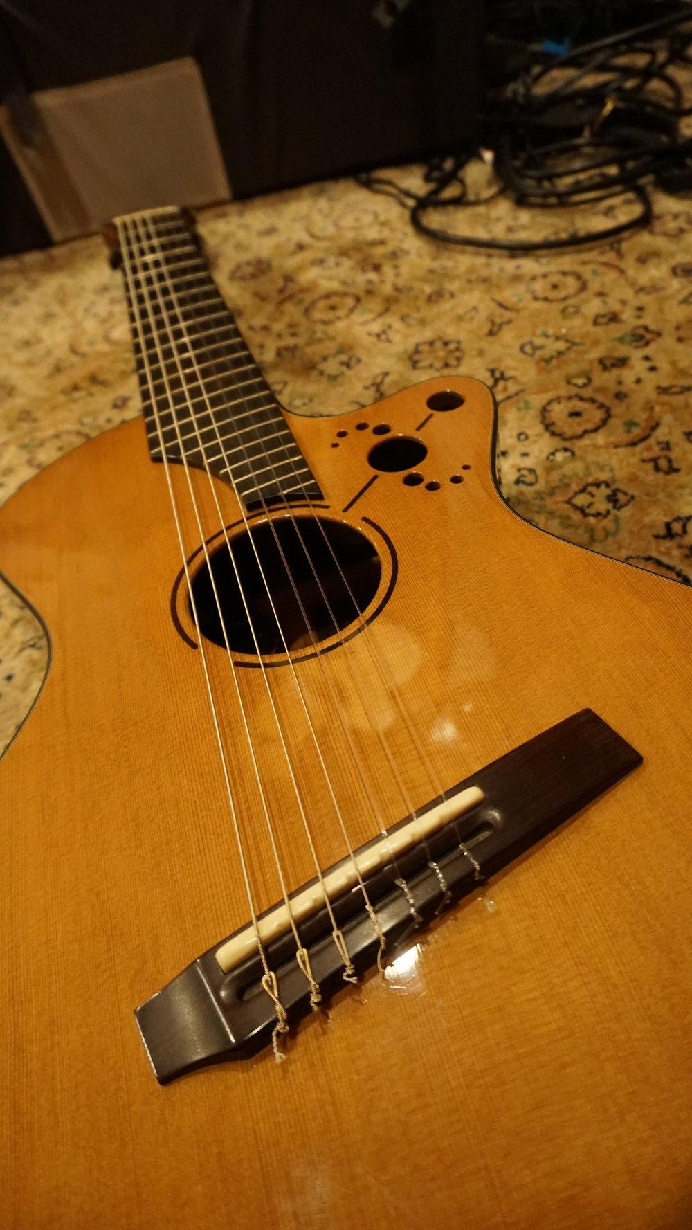 Andrew White 7 string fanned fret