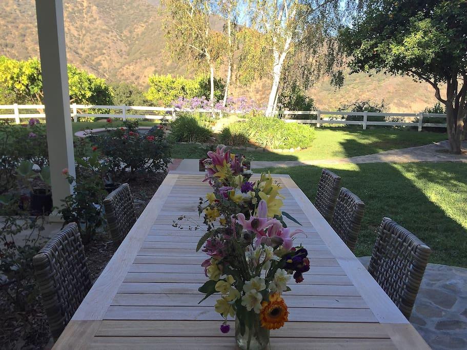 Ojai outdoor dining