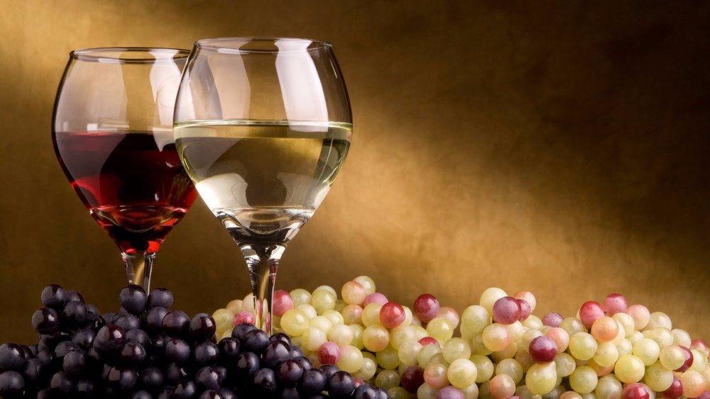 Paso-Robles wine.jpg