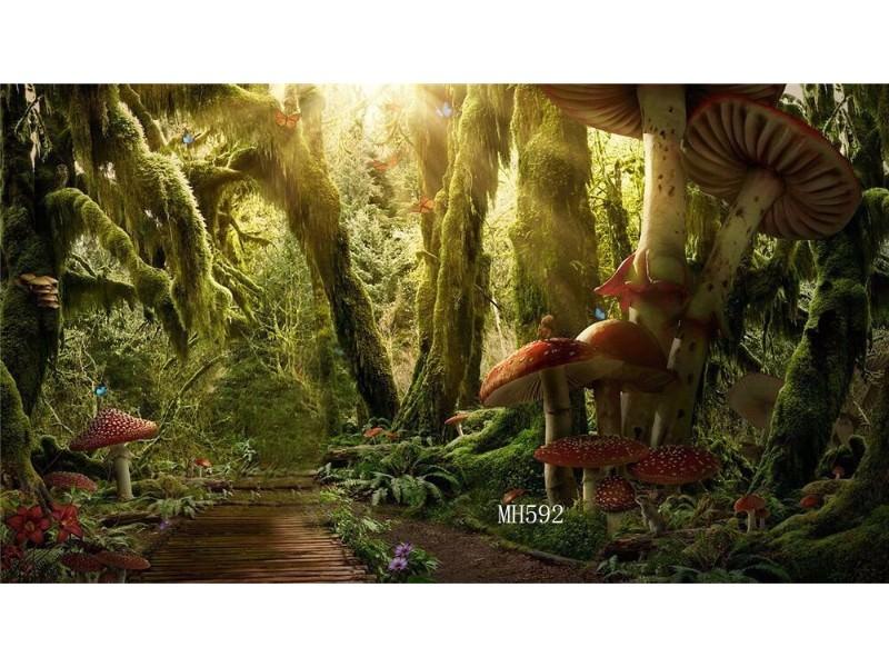 mushroom forest_mini.jpg
