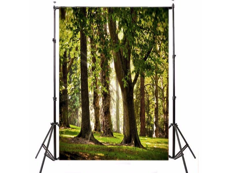 trees_mini.jpg