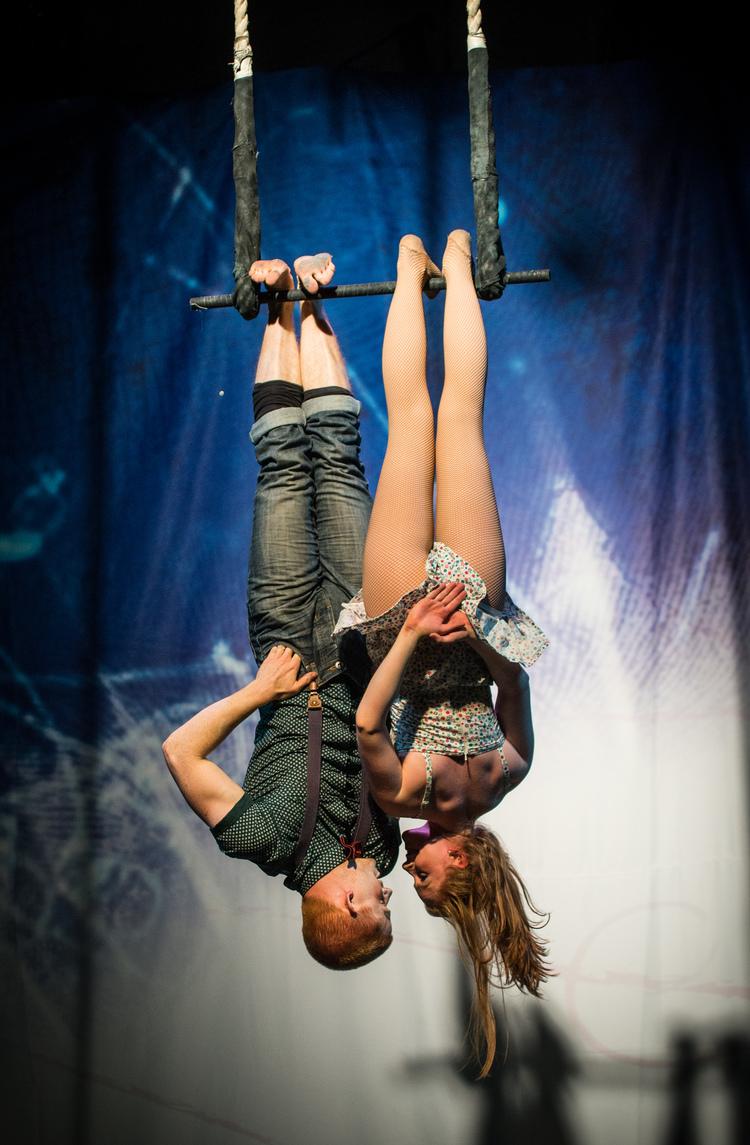 Hikapee Circus Finn Anderson