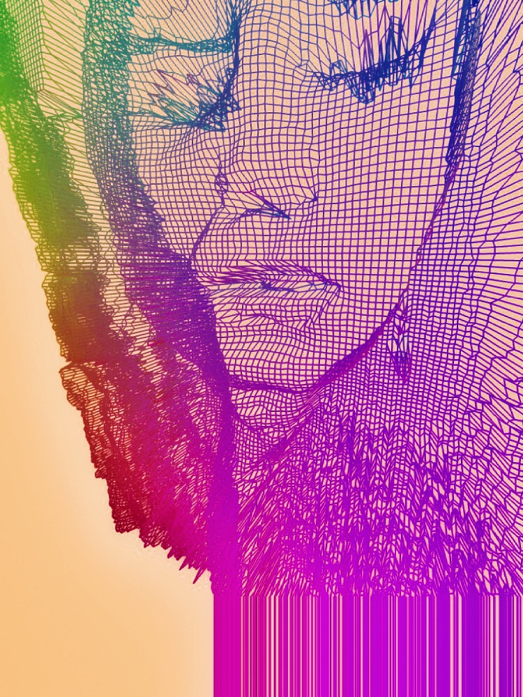 Autoportrait of the artist in the digital world. Paris, 2017