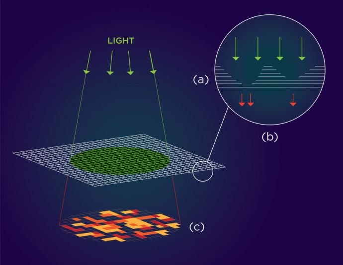 (a) At monolayer thickness, this material has the optical properties of a semiconductor that emits light. At multilayer, the properties change and the material doesn't emit light. (b) Varying the thickness of each layer results in a thin film speckled with randomly occurring regions that alternately emit or block light. (c) Upon exposure to light, this pattern can be translated into a one-of-a-kind authentication key that could secure hardware components at minimal cost.(Image: Althea Labre, NYU Tandon)