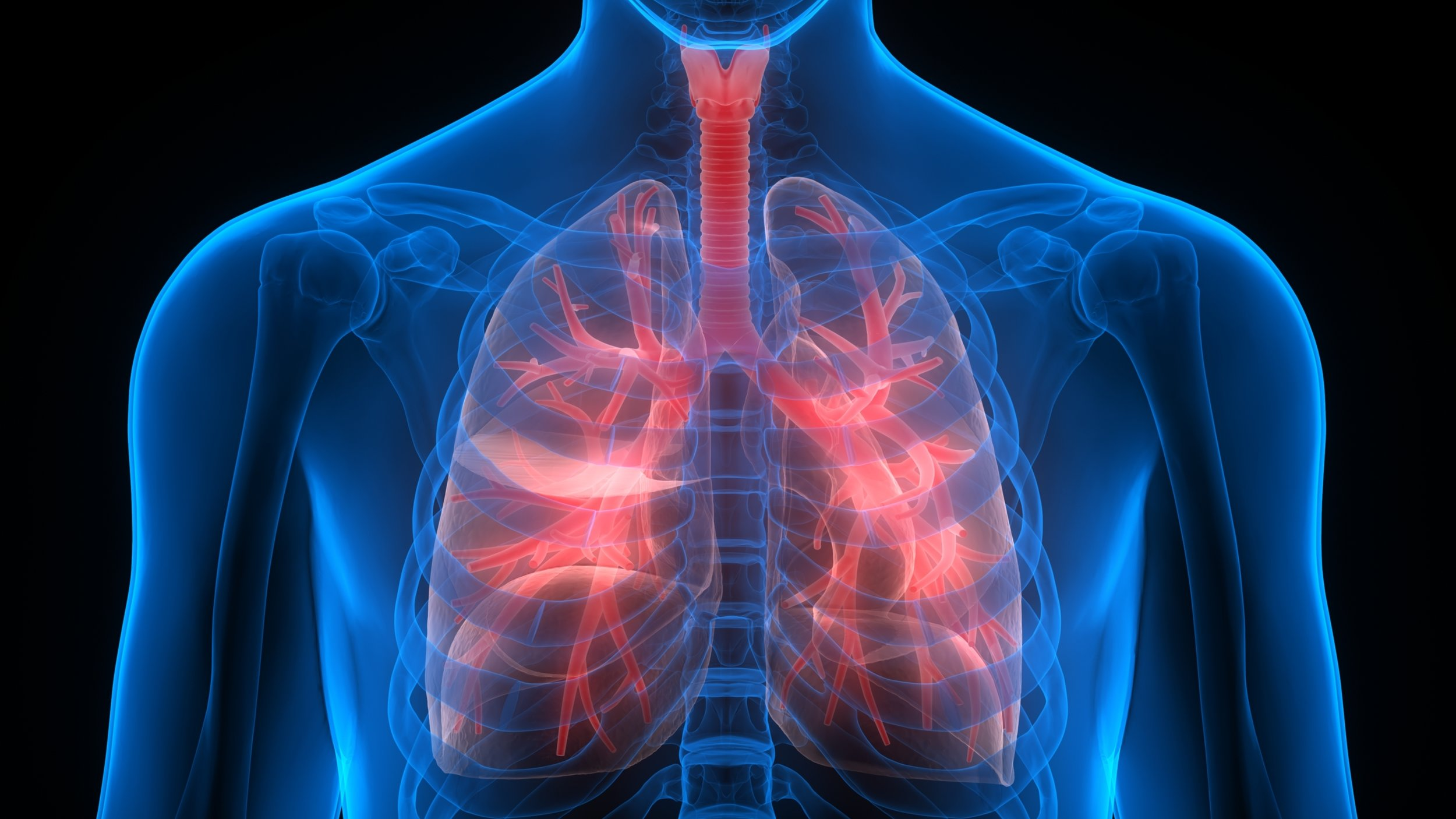 Newly developed nanoparticles help fight lung cancer in animal model