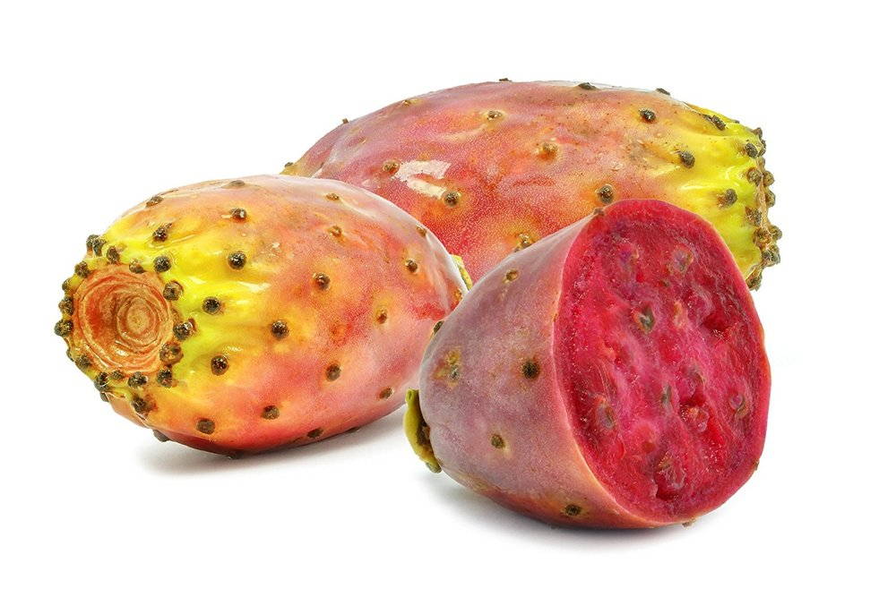 prickley pear.jpg