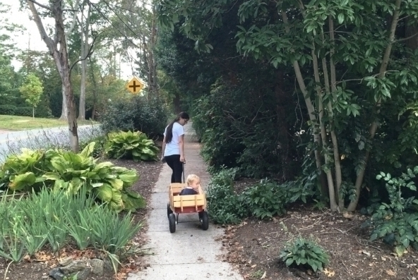 Getting around on a sidewalk in Swarthmore