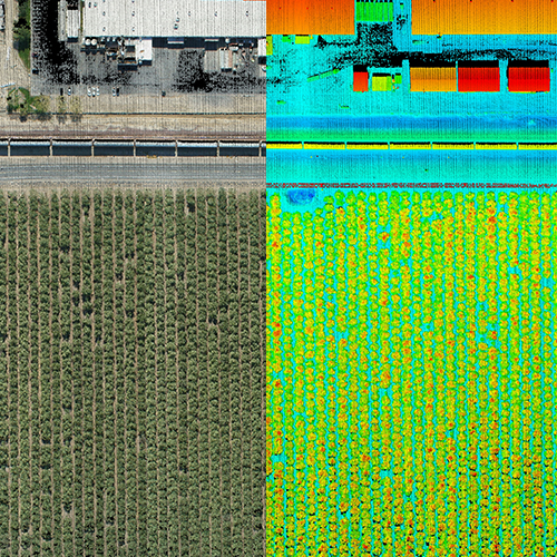 Phoenix LiDAR Pipeline Pointcloud and RGB Fusion