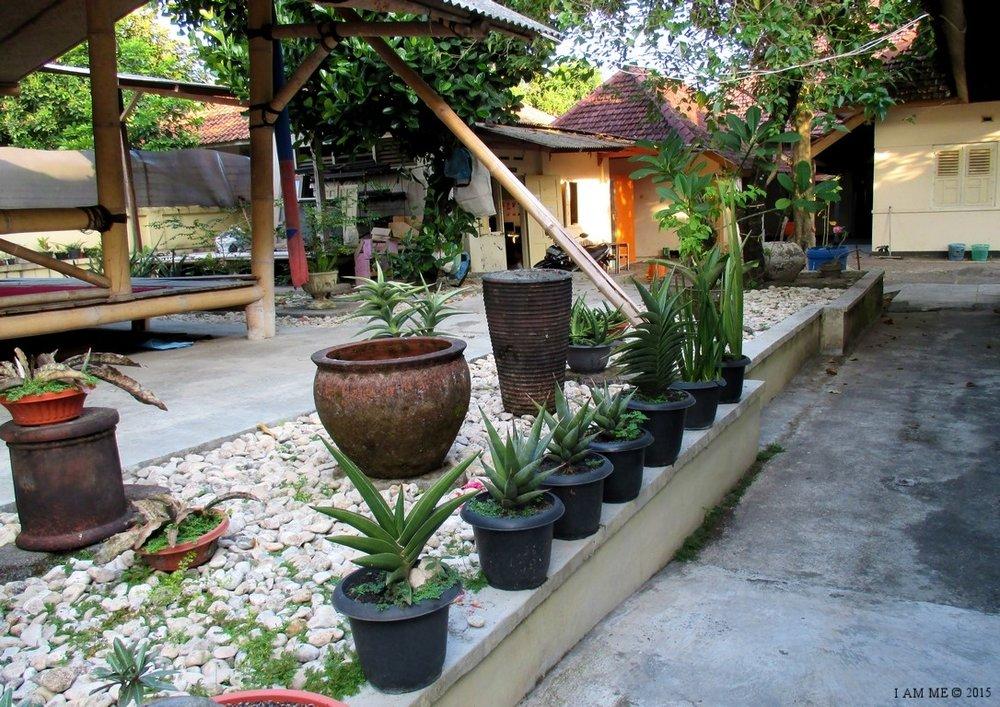PKBI Garden