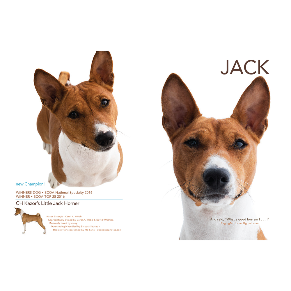Jack+ad.png