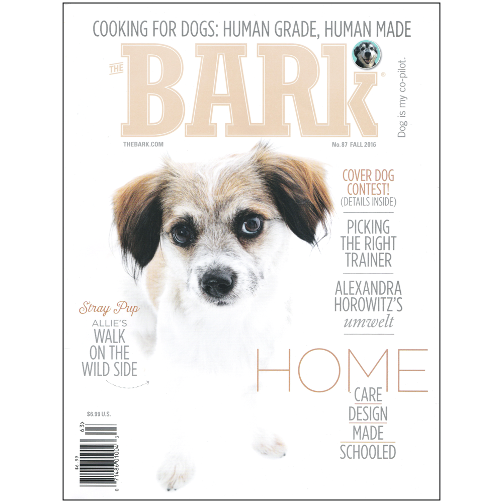 Bark-cover-white-sq.png