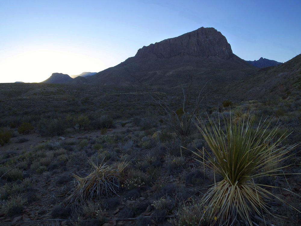 Nugent Mountain, Big Bend N.P. -Photo by Time Giller
